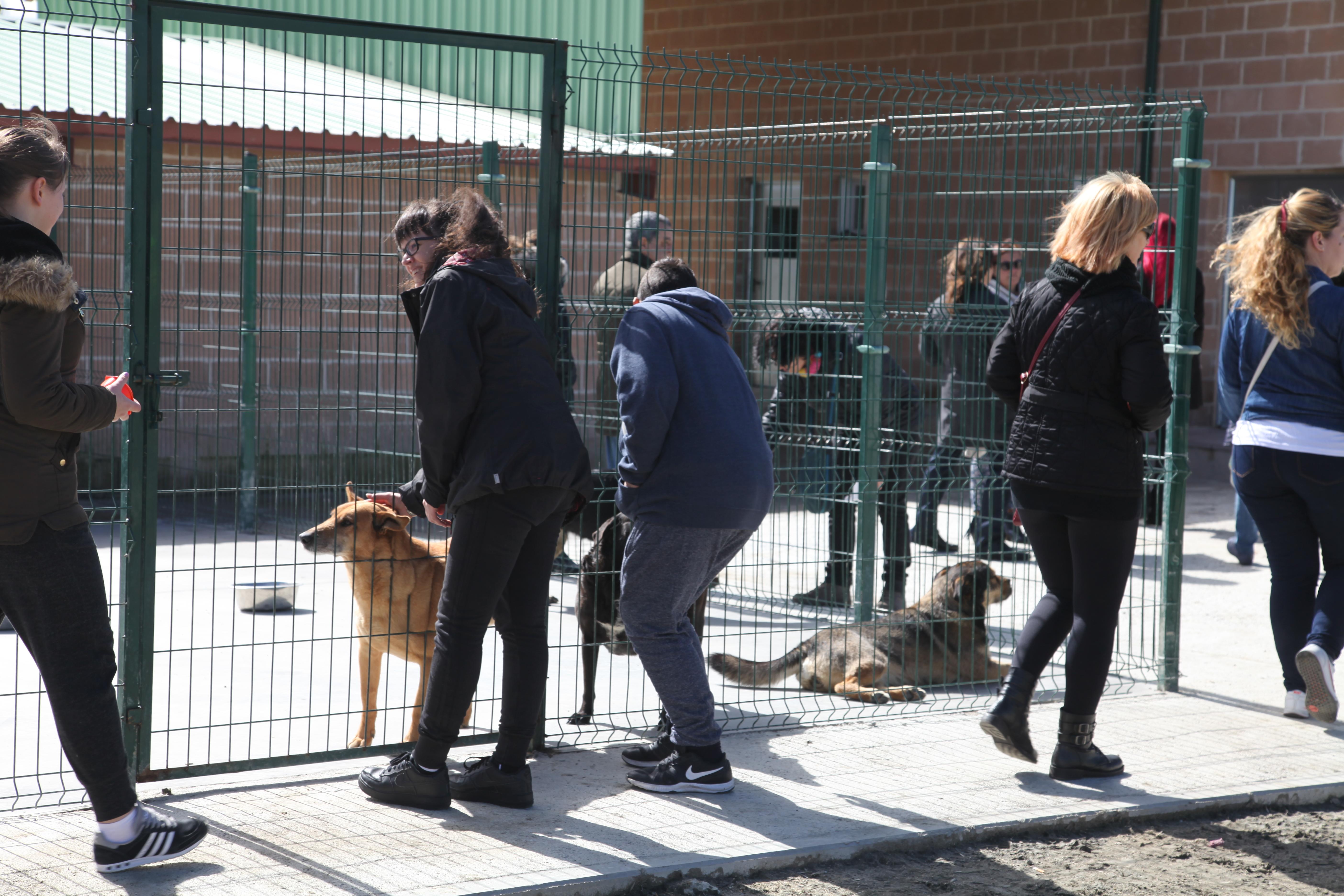 NUEVAS MEJORAS EN EL CENTRO DE PROTECCIÓN ANIMAL